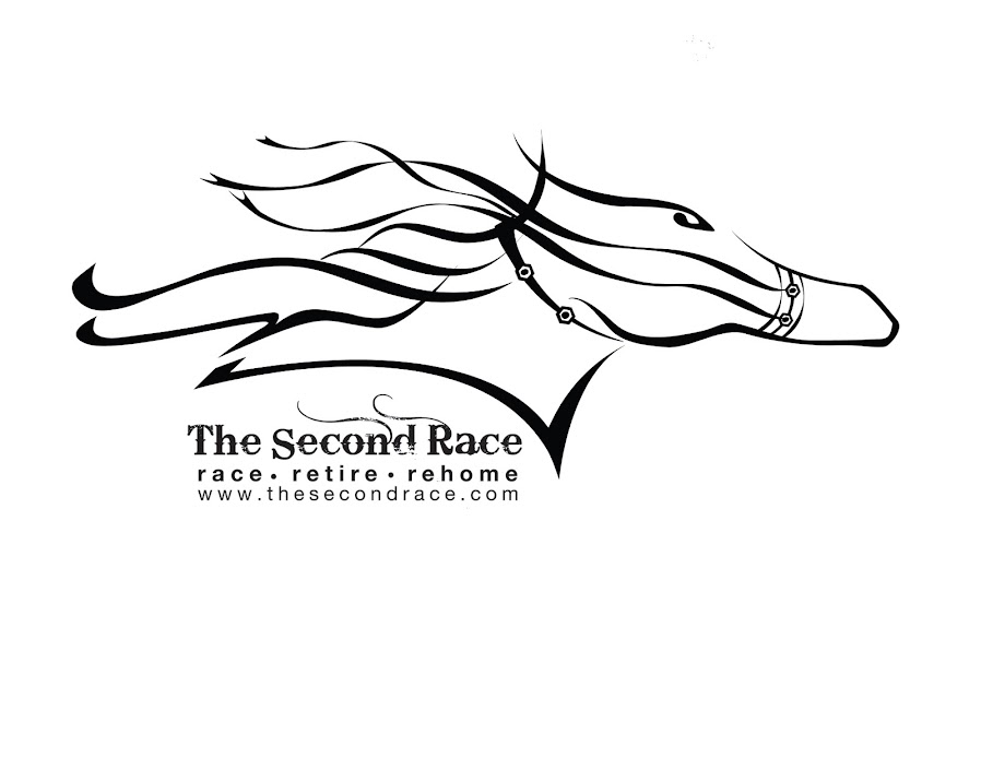 The Second Race