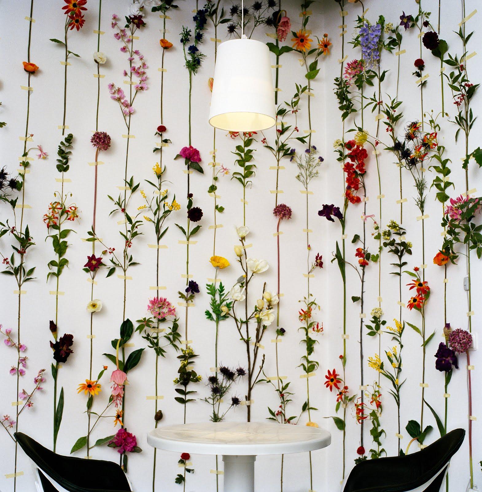 http://2.bp.blogspot.com/_ODgrUwIJYyU/TQMPnODQthI/AAAAAAAABYA/0JS5KYJWvBs/s1600/tensta_flower_wallpaper.jpg
