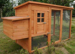 Build A Chicken Coop House