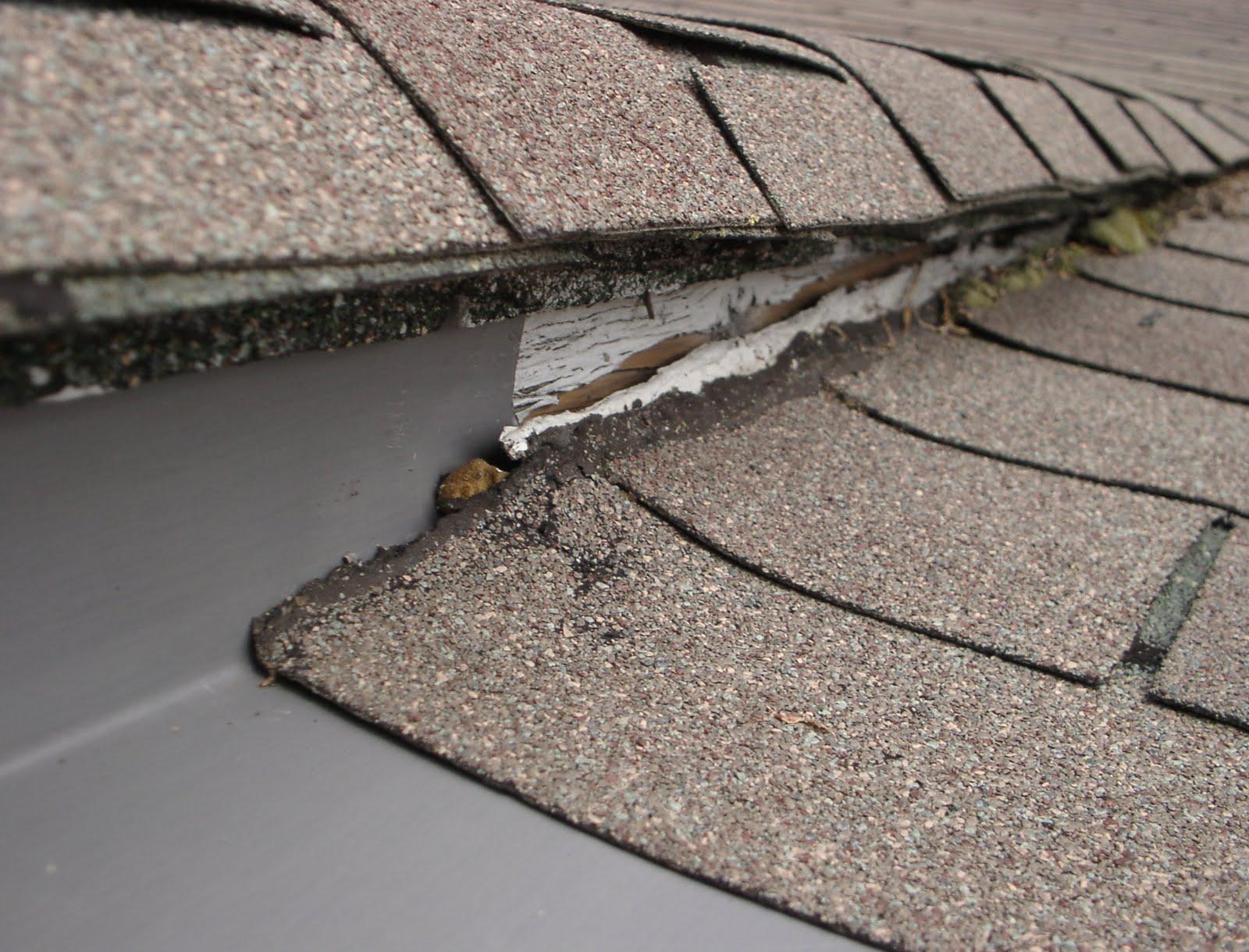 Waterloov landscaper causes gutter overflow for Leaking roof gutter