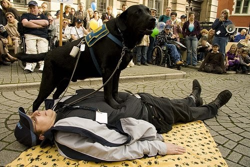 Dr Deb Psychiatric Service Dogs