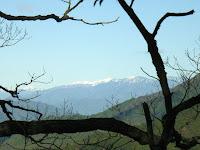 小ピークから遠く雪山