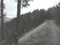 鳶ノ巣山登山口付近よりの眺望