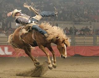 Temporada De Rodeios 2009 Agita O Estado Do Texas