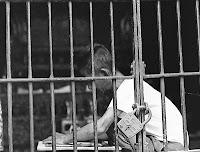 ילד כלוא - אילוסטרציה