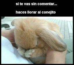 Pobre Conejito