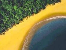 I love my Brazil !