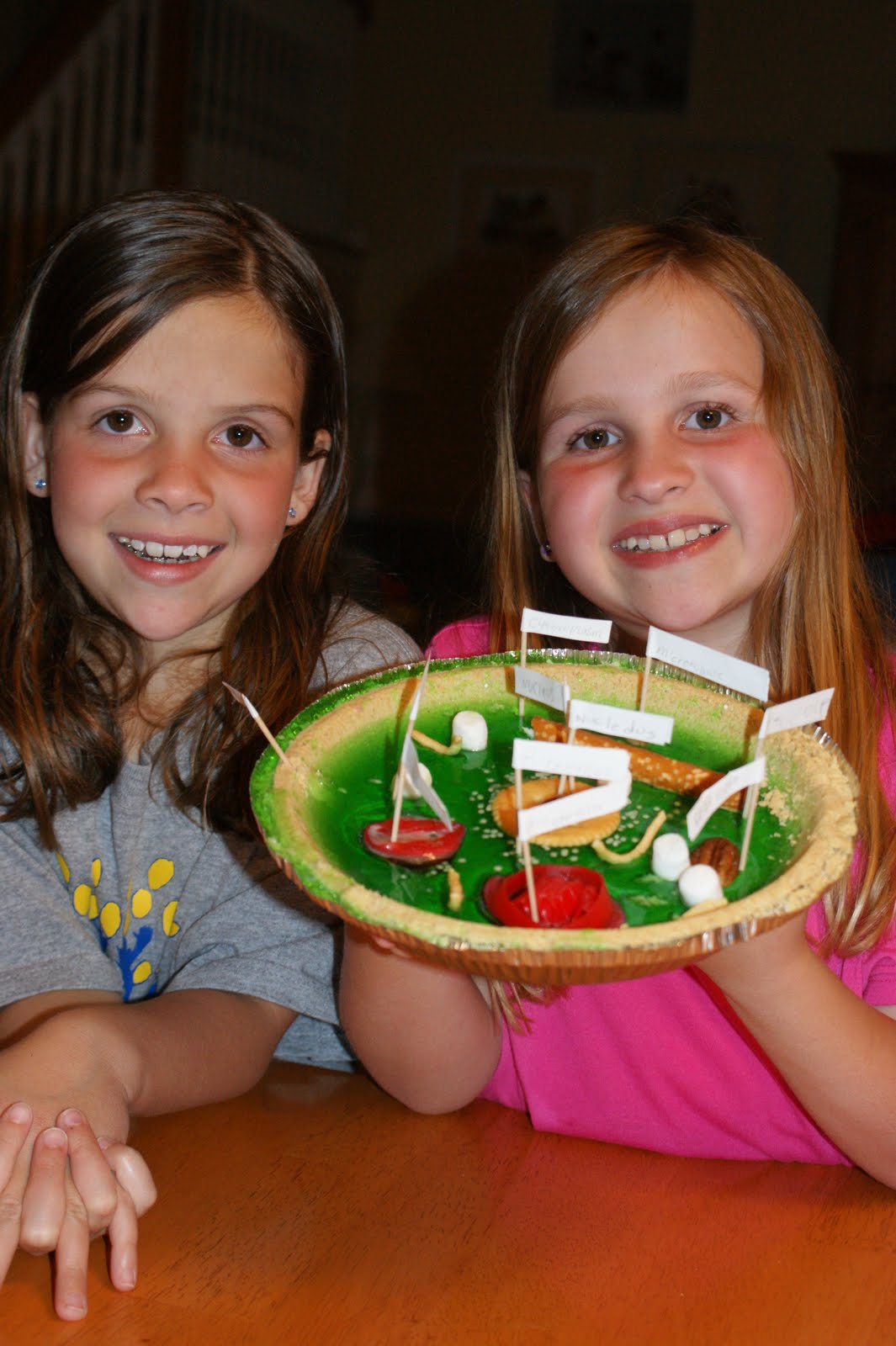 Edible Plant Cell Project Ideas http://5kidsmom-margot.blogspot.com/2010/04/edible-plant-cell.html