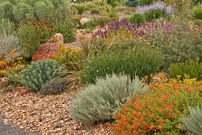 Western Garden Ideas cool design ideas sunset western garden creative 12 fresh ideas from the new sunset western garden The Horticulture Education Coordinator In Ft Collins Shares Ideas About Just What Makes A Western Garden