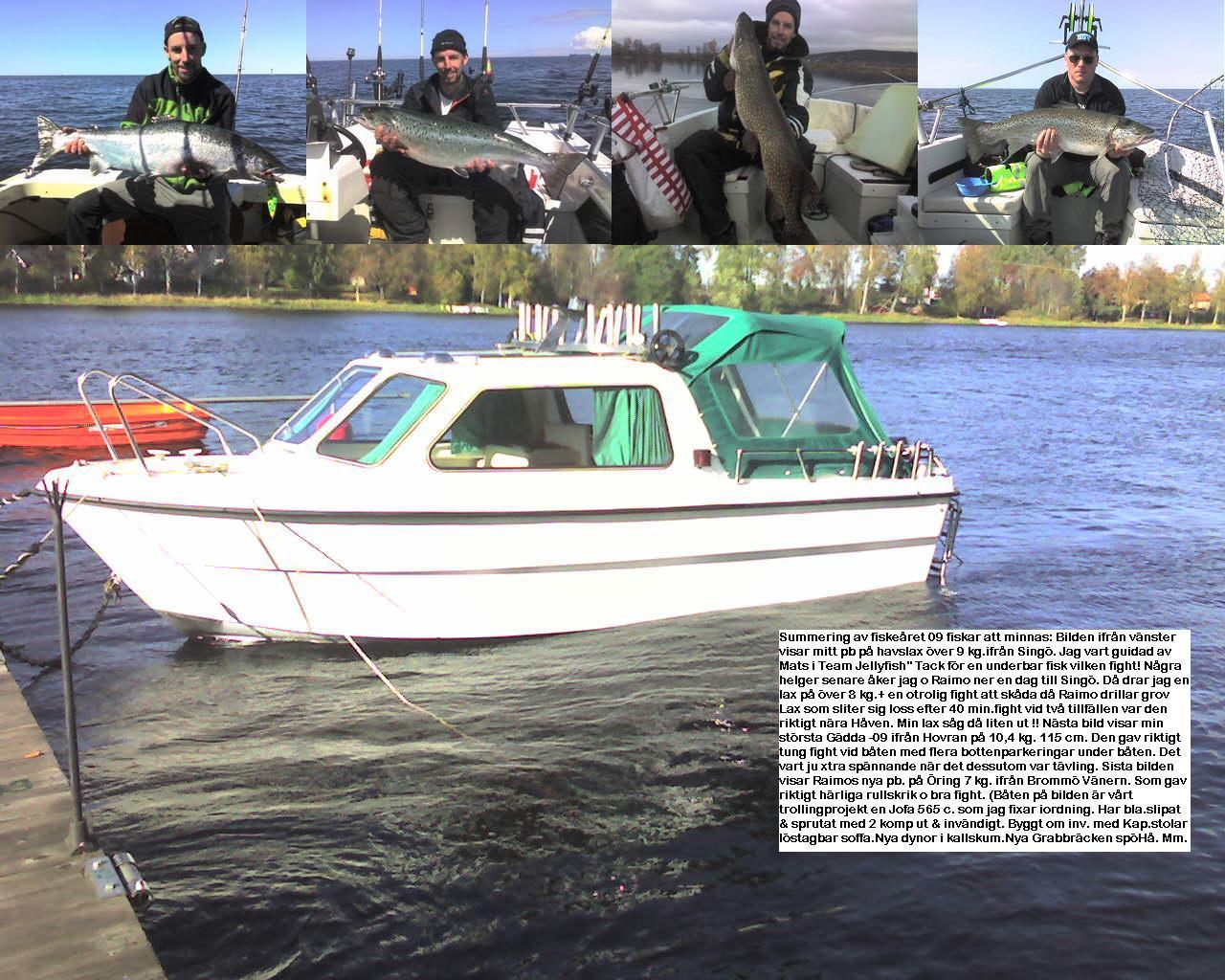 Våra största fiskar 09
