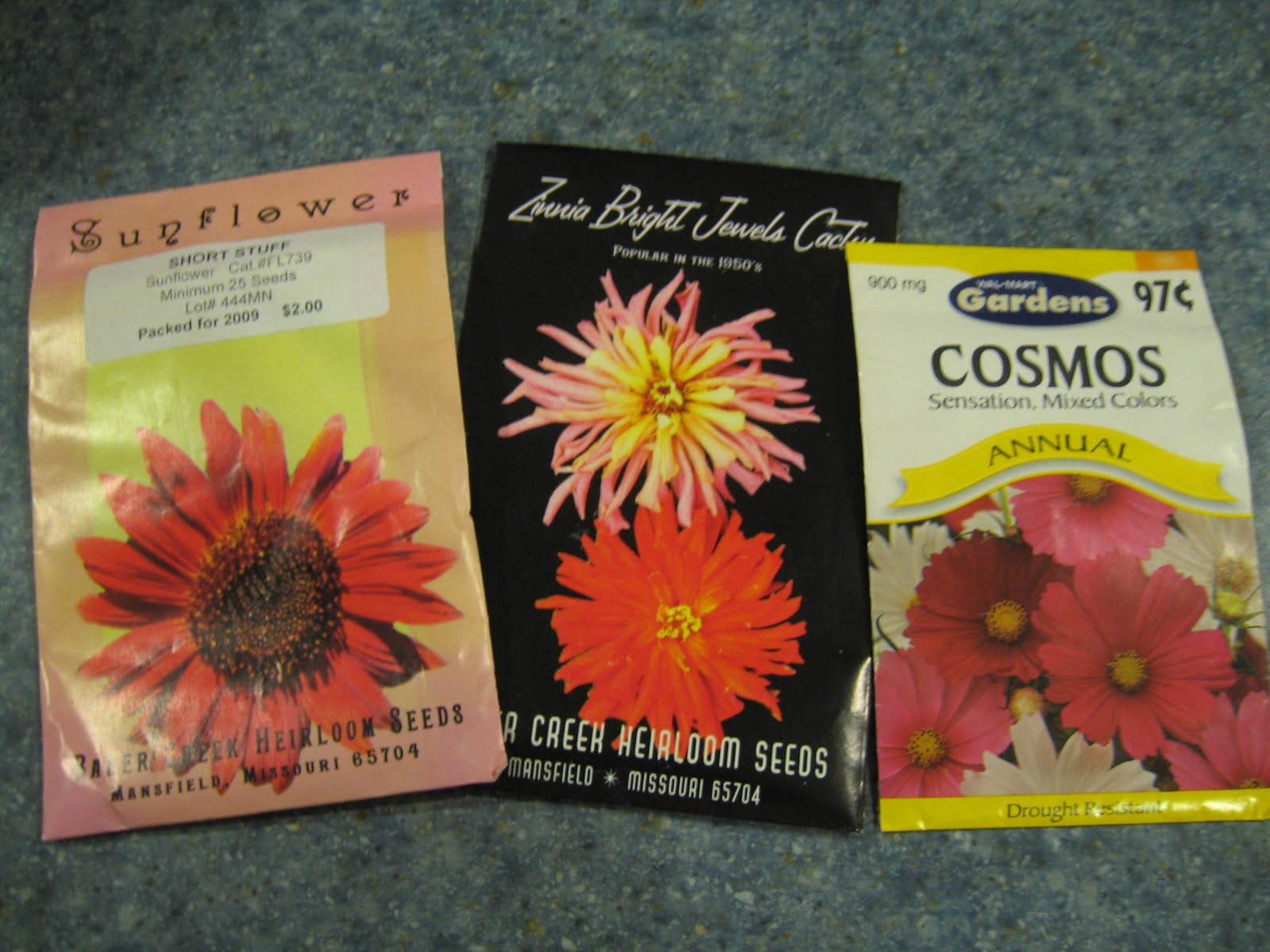 Home Joys Frugal Gardening Tip 3 Grow Annual Flowers From Seed