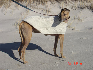 Dog Snood - AllFreeCrochet.com - Free Crochet Patterns, Crochet