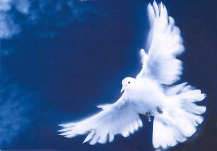 Spirito Santo....soffia...su di me...fiume di pace...mare d'amore...