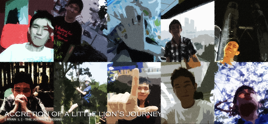 ACCRETION OF A LITTLE LION'S JOURNEY