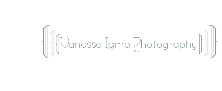 vanessa lamb photography