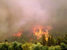 Φωτιές Καλοκαιριού 2007