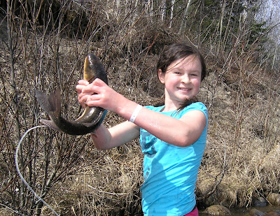 Red lake fishing reports ontario for monster northern pike for Bucs fishing report