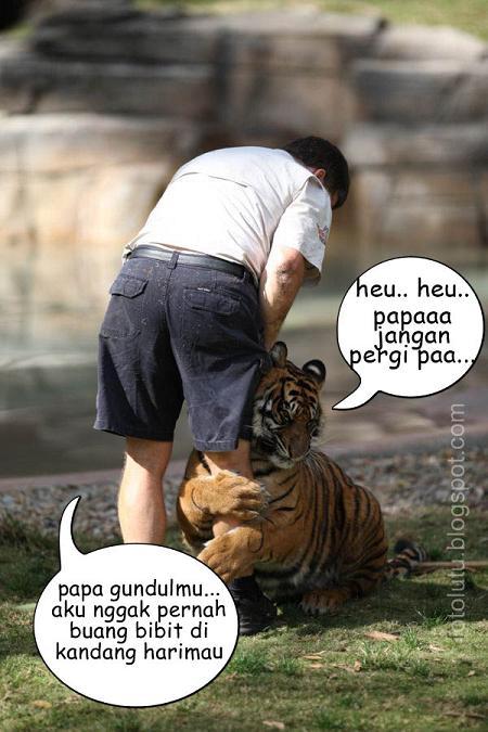 Papa Jangan Pergi: anaknya harimau papanya manusia
