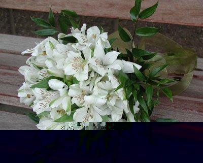 Bouquet de alstromérias brancas