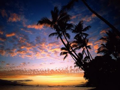 """صور "" 1213561858_afterglow-hawaii.jpg"