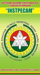 Mi  institución técnica