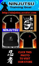 Visit the Ninja Store. Check it out.