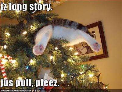 Lolcat stuck in christmas tree
