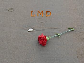 Código LMD