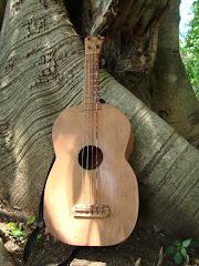 La Guitarra de Ramón Santiago