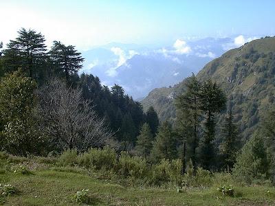 Best in Nainital