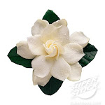 my Flower is GarDeNiA