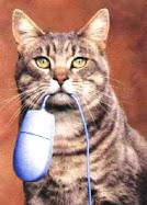 ¿Alguien ha visto mi ratón?