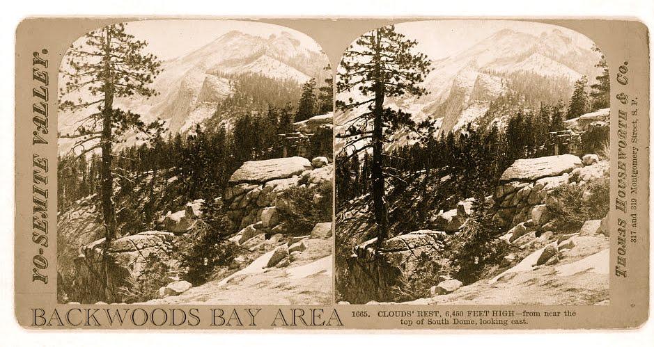 Backwoods Bay Area