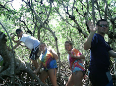 IN the mangrove