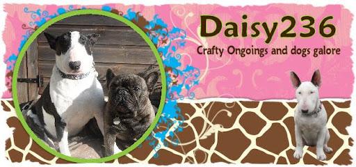 Daisy236
