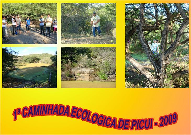 1ª CAMINHADA ECOLOGICA DE PICUI
