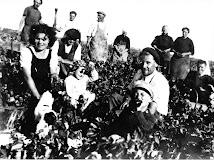 vers 1950 à la Pironnière