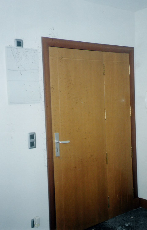 Puerta de entrada de fabricación propia hecha en fibra barnizada al