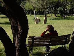 """domus : """"hora de banco"""" en el parque"""