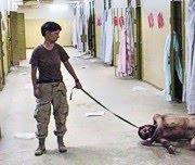 Lynndie England misshandelt Iraker
