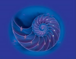 Un hermoso Nautilus. Refugio de mi Alma y de mi Ser.