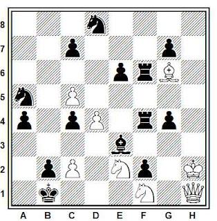 Problema número 401 en problemas de ajedrez: La retirada de Napoleón