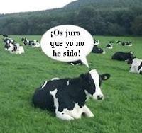 Una vaca jurando que no se ha tirado un pedo