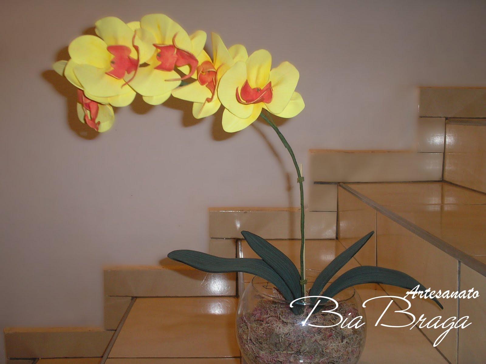 Bia Braga Orqudea Phalaenopsis Amarela De EVA