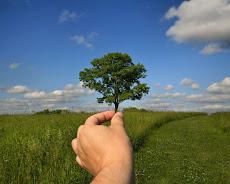 โลกสวยด้วยมือเรา