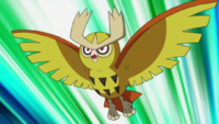 Youngster Albert 200px-Ash_Noctowl