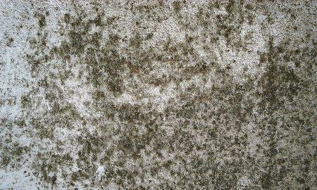 Humedad por condensaci n - Humedad por condensacion en paredes ...