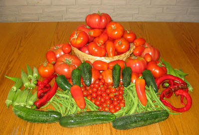 Basket of tomatoes, okra, peppers, cucumbers, beans!