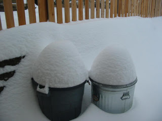 Snow on the Trash Cans