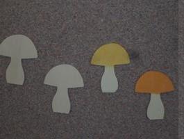 Ciupercute dimensiuni: 6/7,5 cm